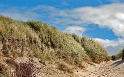 Potje golf 2.0 in Terschellinger duinen