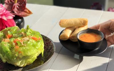 Spring Jakarta Salad met Loempia's