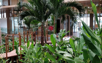 Het 'groenste' hotel van Nederland is open!