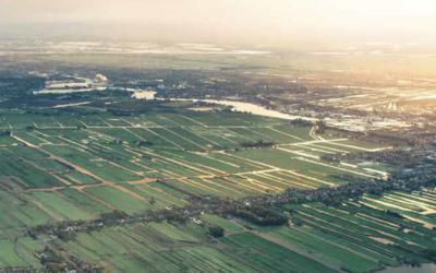 Nederlandse landbouw aan de top