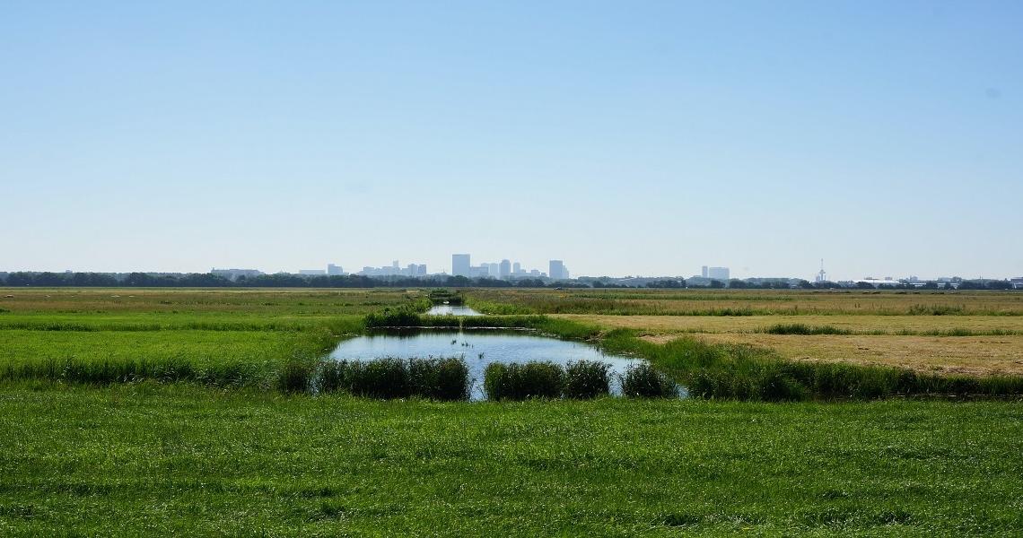 rotterdam - manhattan aan de maas 2 - HARRY! by WestCord